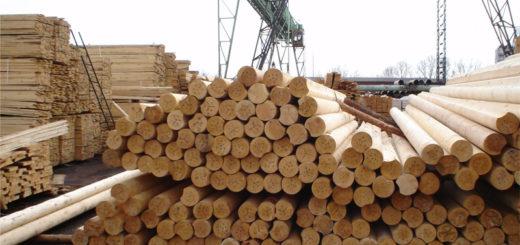Лесная промышленность Украины
