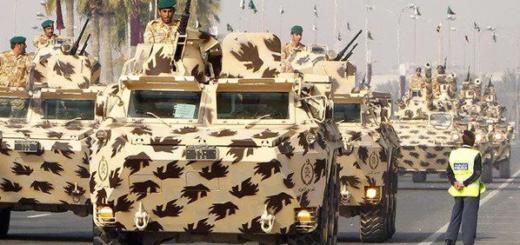 Солдаты Катара