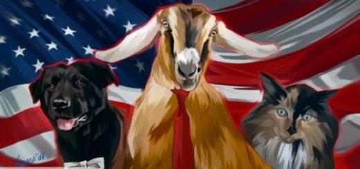 Дело о «российском вмешательстве» ознаменовало крах однополярного мира США