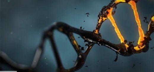 Ученые выявили нарушения в ДНК, вызывающие волчанку