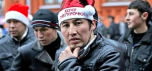 «Теневое ЦРУ»: в Россию завезут мигрантов из Афганистана и Пакистана